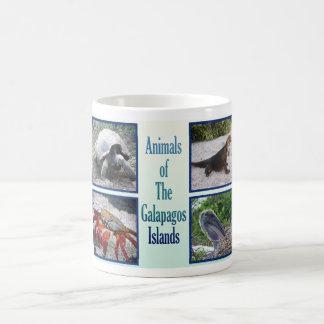 Animales de las islas de las Islas Galápagos Taza