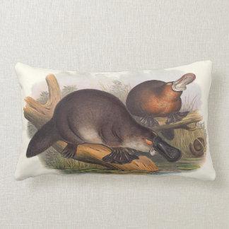Animales de los amortiguadores de Australia Cojín Lumbar