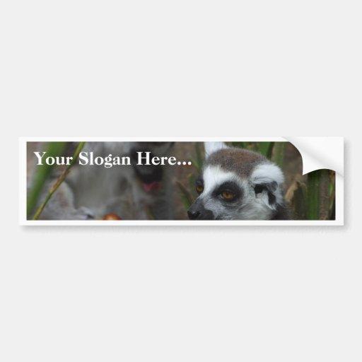 Animales de los Lemurs Pegatina Para Auto