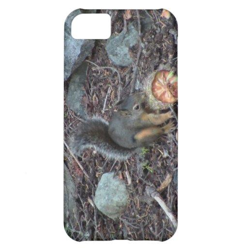 Animales de los mamíferos de la fauna de Yolly Bol Funda Para iPhone 5C