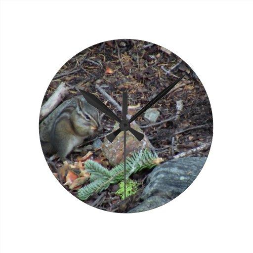 Animales de los mamíferos de la fauna de Yolly Bol Reloj Redondo Mediano