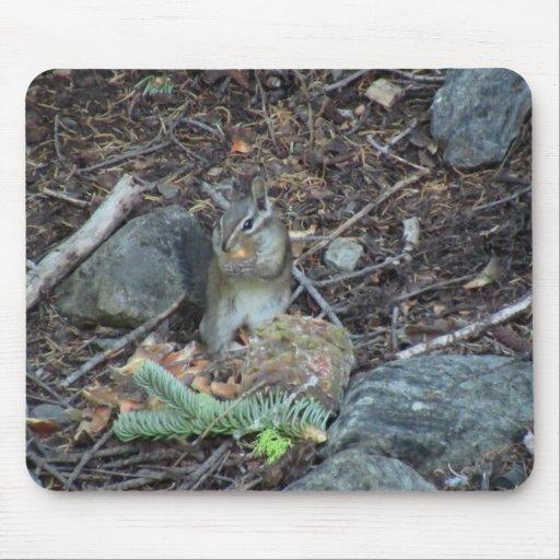 Animales de los mamíferos de la fauna de Yolly Bol Tapete De Ratones