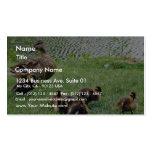 Animales de los patos plantillas de tarjeta de negocio