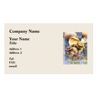 Animales del campo - apenas tramados plantillas de tarjetas personales