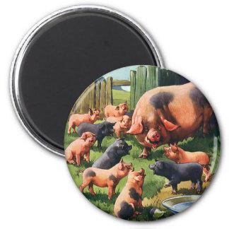 Animales del campo del vintage, cerdos, cerda con imán redondo 5 cm