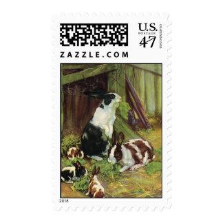 Animales del campo del vintage, conejos del sellos postales