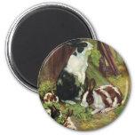 Animales del campo del vintage, conejos que juegan iman para frigorífico