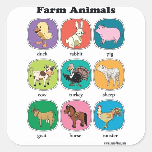 Animales del campo pegatina cuadrada