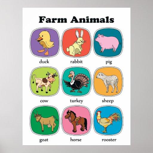 Animales del campo póster
