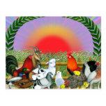 Animales del campo tarjeta postal