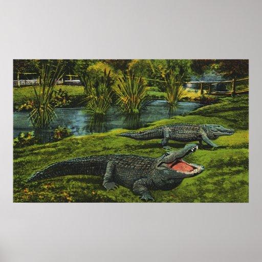 Animales del vintage, reptiles de la vida marina, póster