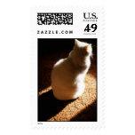 Animales domesticados 70 sello