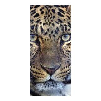 Animales en el salvaje tarjeta publicitaria a todo color