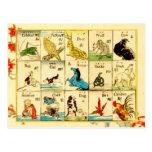 Animales etiquetados en japonés y inglés postal