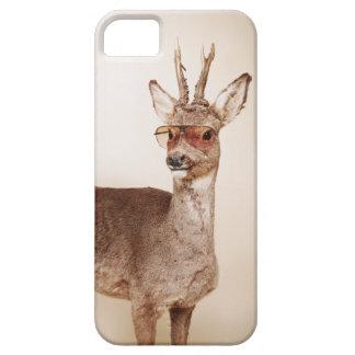 Animales frescos en gafas de sol iPhone 5 carcasa
