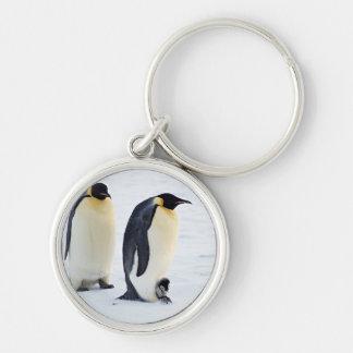 Animales lindos congelados pingüino del tiempo del llavero redondo plateado