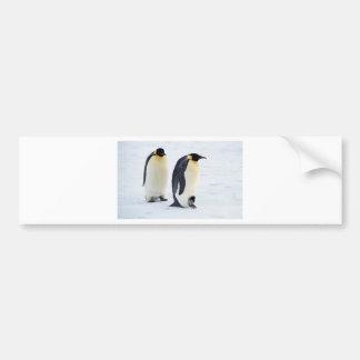 Animales lindos congelados pingüino del tiempo del pegatina para auto