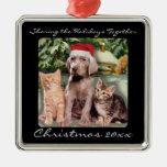 Animales lindos perrito y mascota de los gatitos ornamentos de reyes