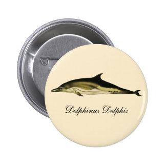 Animales marinos del vintage, mamíferos, delfínes pin