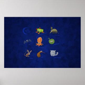Animales nocturnos póster