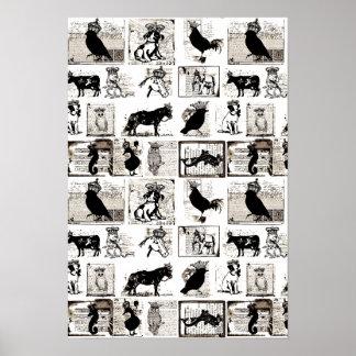 Animales reales blancos y negros del vintage póster