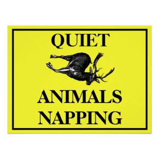 Animales reservados Napping Posters