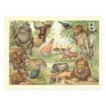 Animales salvajes de África Postal