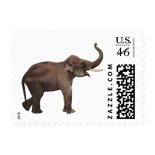 Animales salvajes del vintage, elefante asiático,