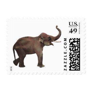 Animales salvajes del vintage, elefantes asiáticos timbres postales