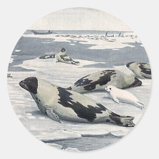 Animales salvajes del vintage, sellos de puerto pegatina redonda