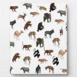 Animales salvajes placas con fotos