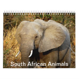 Animales surafricanos calendario de pared