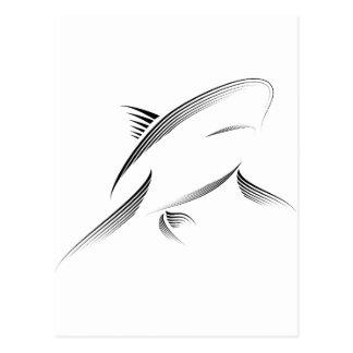 Animales - tiburón tarjeta postal