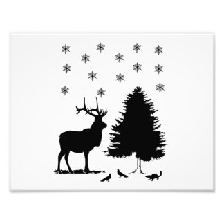 Animales y nieve fotografía