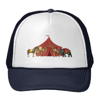 Animales y tienda de circo gorros bordados