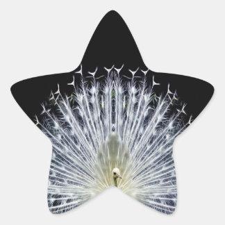 Animalia blanco del Pavo del pavo real Pegatina En Forma De Estrella