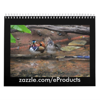 AnimalKingdom Prints Calendar