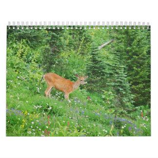 Animals 2013 calendar