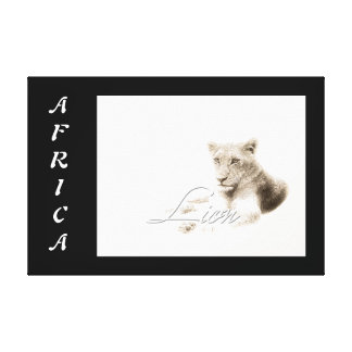 Animals Africa lion art Stretched Canvas Print