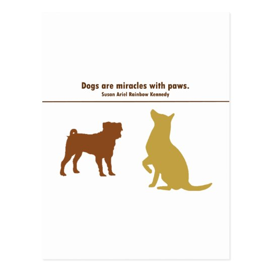 Animals Are Miracles Postcard