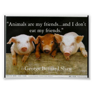 animals are my friends posters