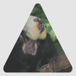 Animals at the Zoo Triangle Sticker