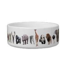 Animals Bowl