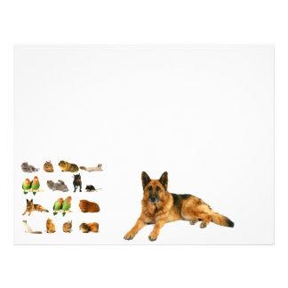 animals custom letterhead