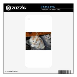 Animals Cute Kitten Kitty Pets Cats iPhone 4S Skin