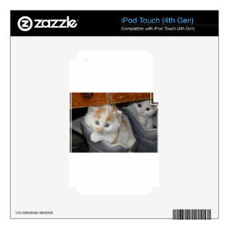 Animals Cute Kitten Kitty Pets Cats iPod Touch 4G Skin
