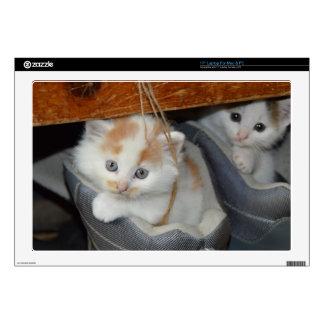 Animals Cute Kitten Kitty Pets Cats Laptop Skins