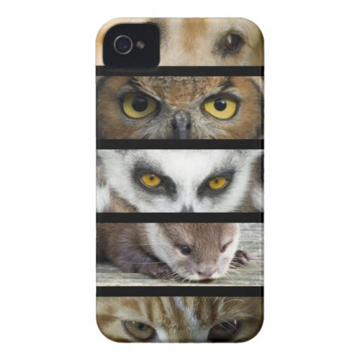 Animals Eyes iPhone 4 Case-Mate Cases
