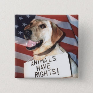 Animals Have Rights Button