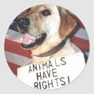 Animals Have Rights Classic Round Sticker